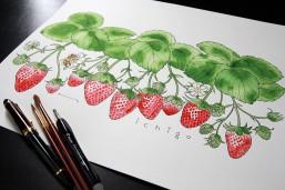 Illustration by kammy 万年筆+透明水彩絵具