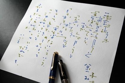 写詩 Pelikan 805とMontegrappa 1930による