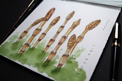 Paper:Arches  Pen:Platinum Century  Pigment:Winsor&Newton Brush FRK