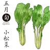 滋賀のおいしいコレクション[小松菜]