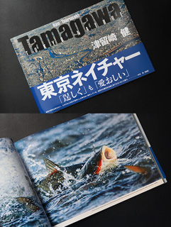 写真集 Tamagawa東京ネイチャー 津留崎健